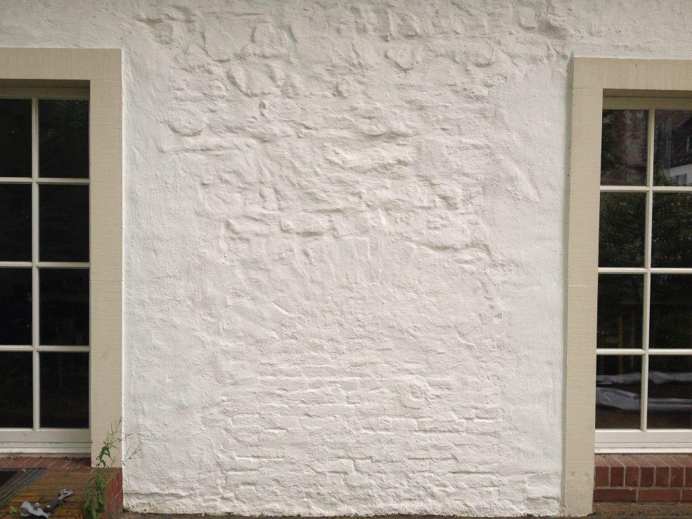 Fassadenreinigung-23