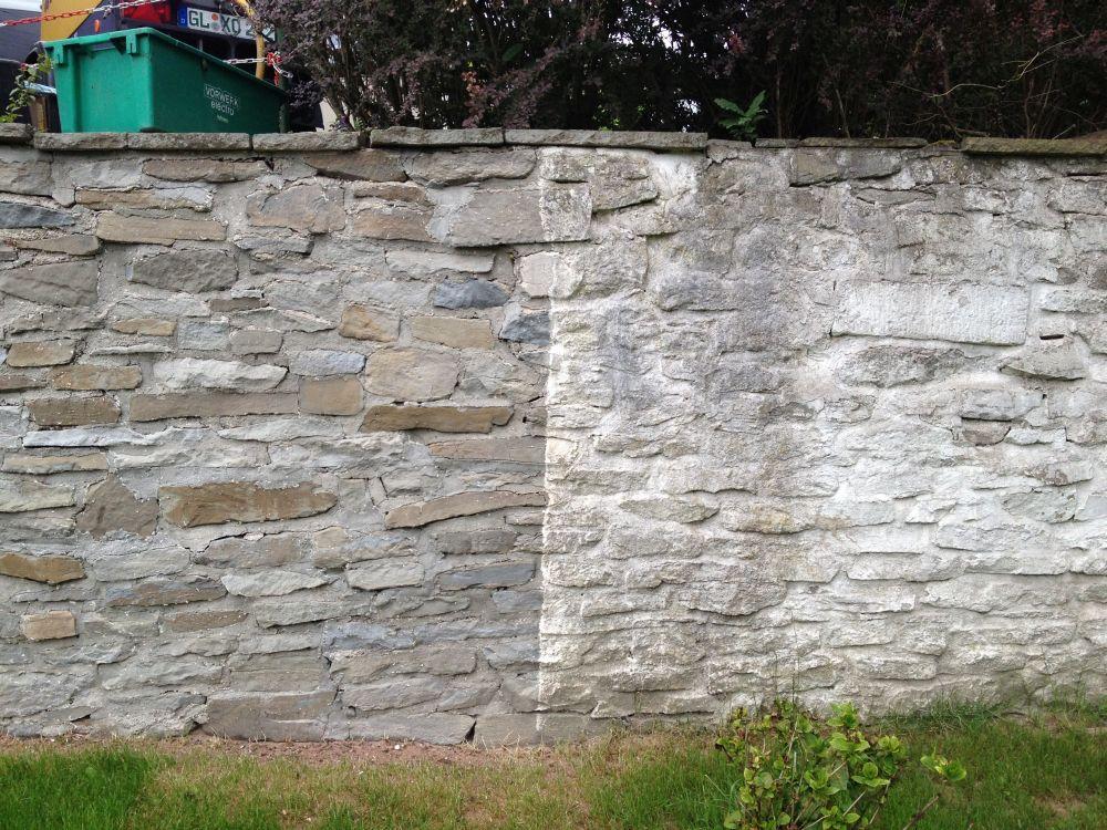 Fassadenreinigung-33