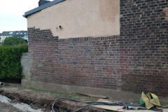 Fassadenreinigung-09