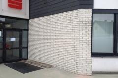 Fassadenreinigung-20